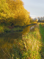 Autumn sunshine River Wylye