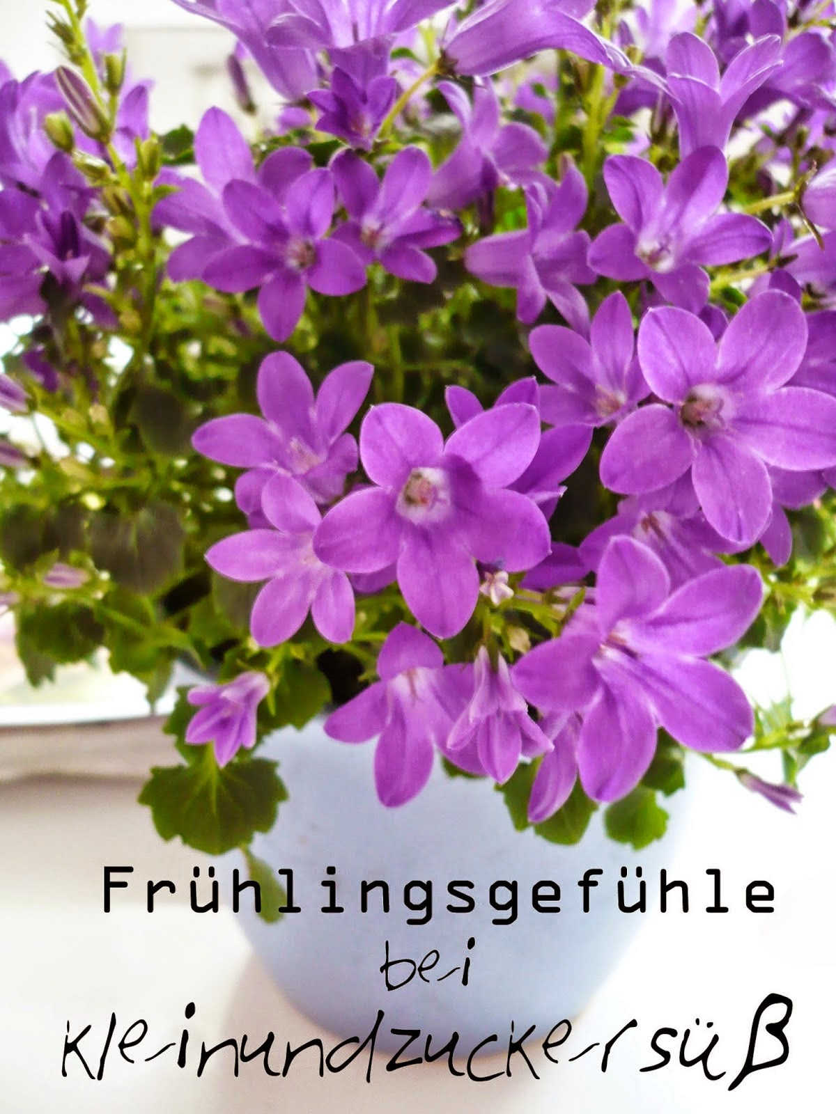 http://kleinundzuckersuess.blogspot.de/2014/03/fruhlingsgefuhle-lasst-uns-gemeinsam.html#more