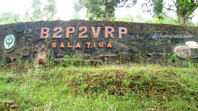 Tulisan di B2P2VRP Salatiga