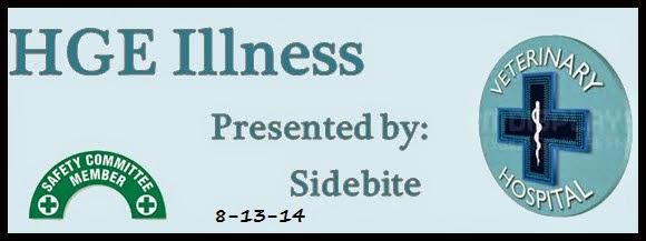 susieandsidebite.blogspot.com