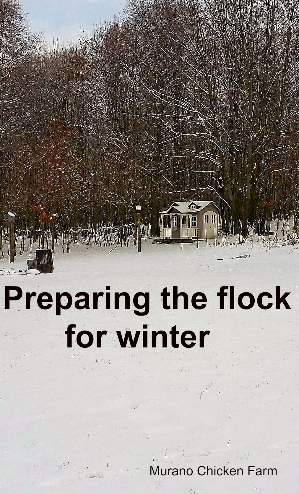 preparing your chicken coop for winter