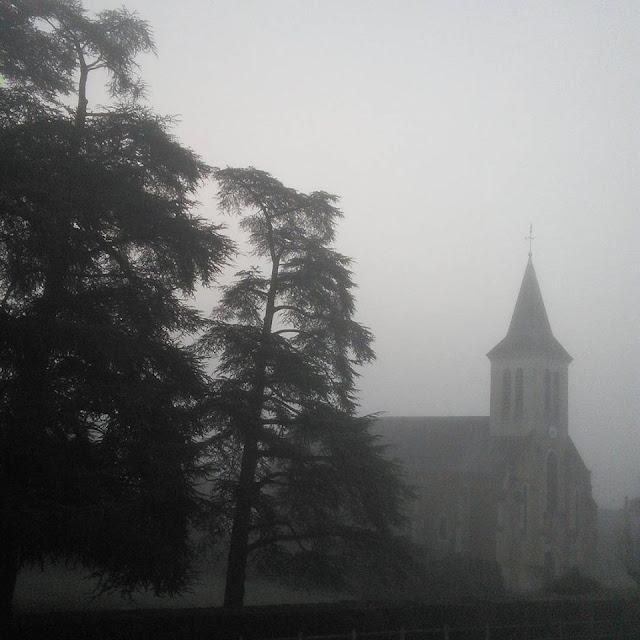 cedres du liban brouillard eglise
