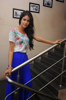 Actress Lavanya Tripathi Latest Pictures at Doosukeltha Movie Interview 0013
