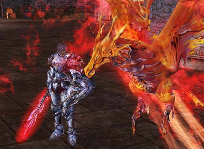Kaleny - phoenix knight in pvp