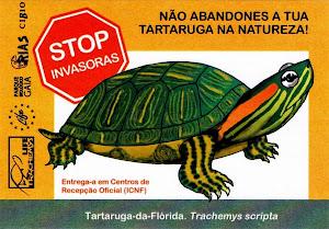 STOP INVASORAS