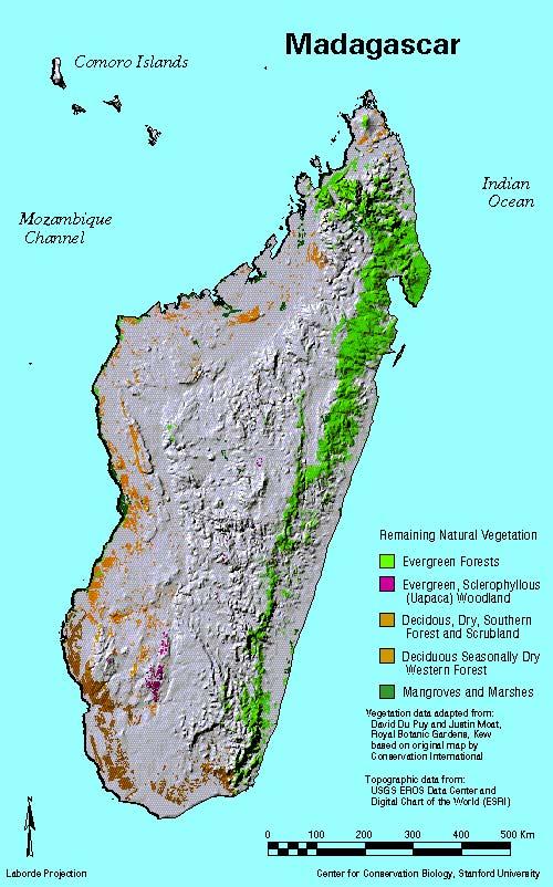 Madagascar Tropical RainForest Map of the Study Area