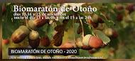 BIOMARATON DE OTOÑO 2020