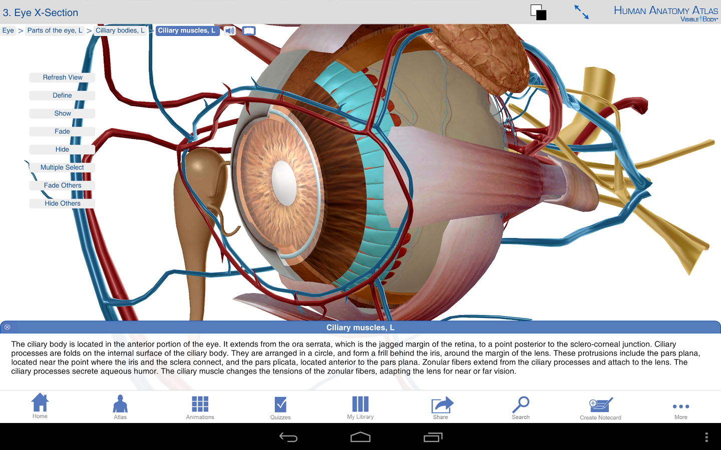 Download Free Top Android Apps: Human Anatomy Atlas v5.0.43 Apk