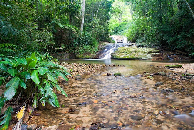 Turismo no Rio de Janeiro cachoeiras na Floresta da Tijuca