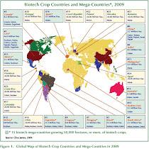 Transgénicos: 134 millones de ha en 2010