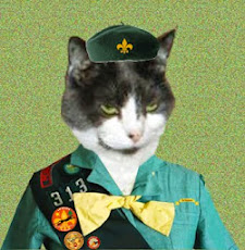 I am Proud to be a Cat Scout: Tender Paws