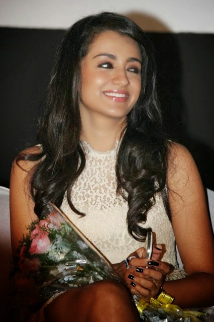 Trisha Hot HD Wallpapers in Mini Skirt