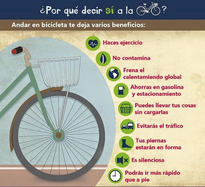 Decile Si a La bici