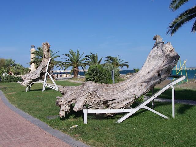 Resmo sahilinde anıt niyetine zeytin kütükleri