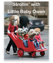 Strollin&#39; With Little Baby Owen by Owen Tales