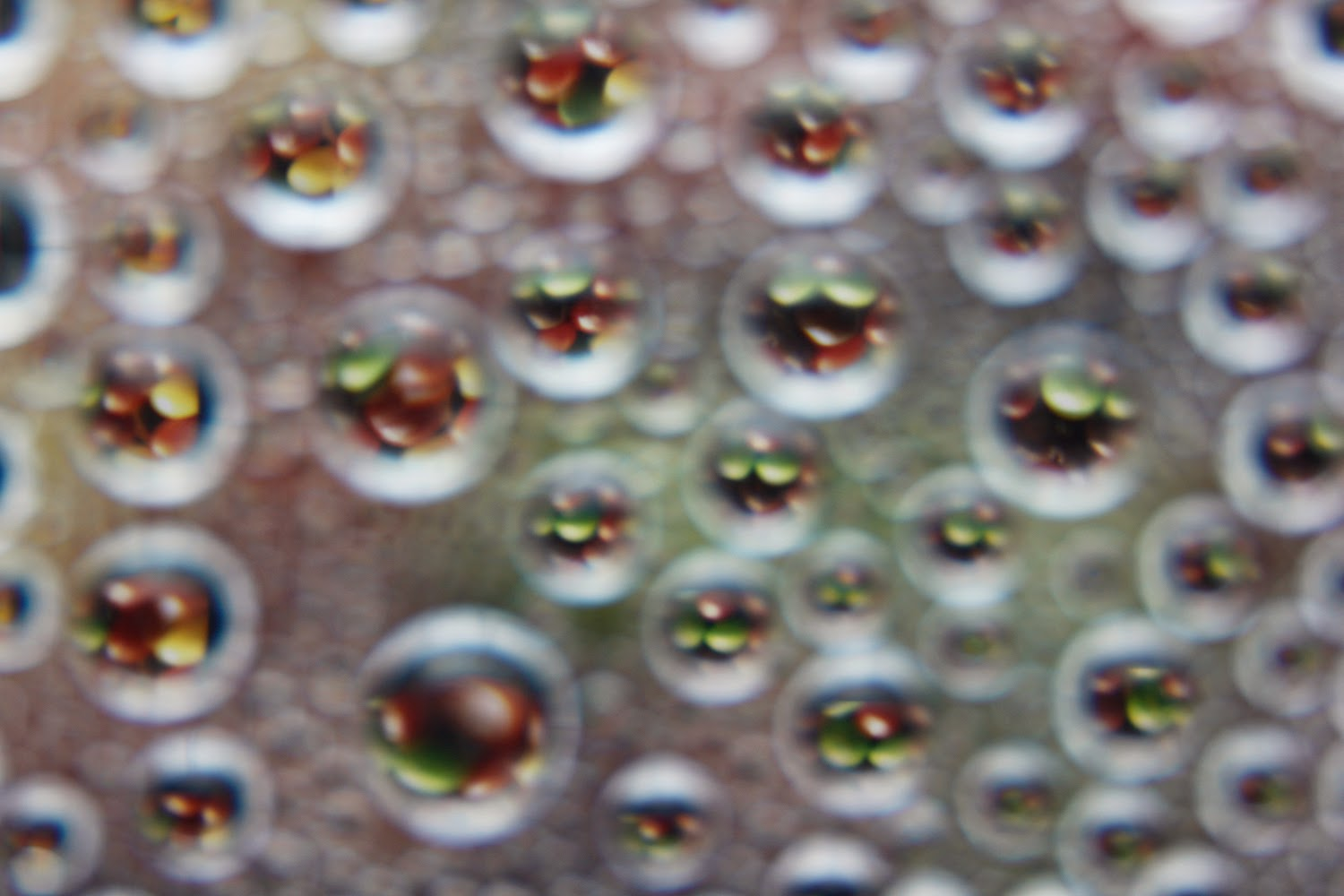Unfocused Droplet Refraction | Boost Your Photography