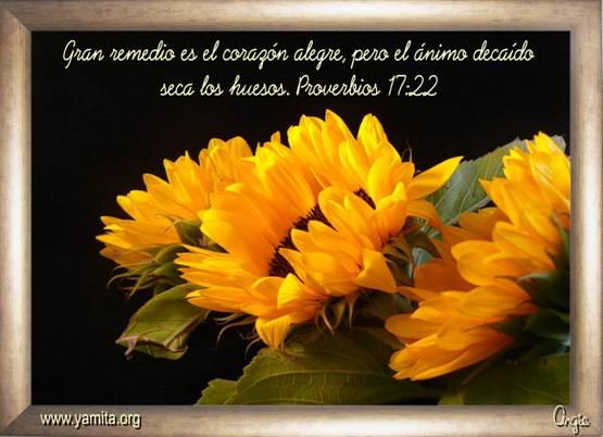 ... seca los huesos - Facebook : Imagenes Cristianas para Facebook