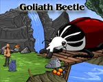 Journeys of Reemus 4 Goliath Beetle walkthrough