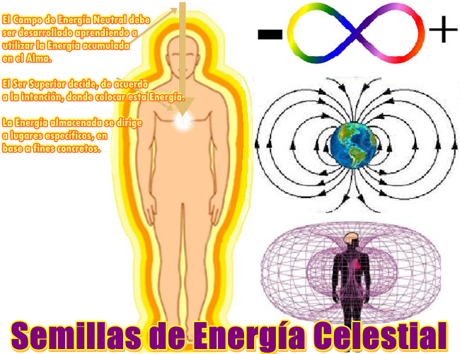 Uds. son Semillas de Energía Celestial, magníficas criaturas de Conciencia de Luz.