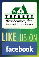 TOPBEST ON FACEBOOK