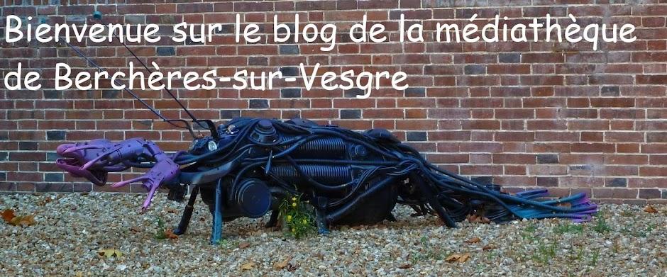 Bienvenue sur le blog de la Médiathèque de Berchères-sur-Vesgre