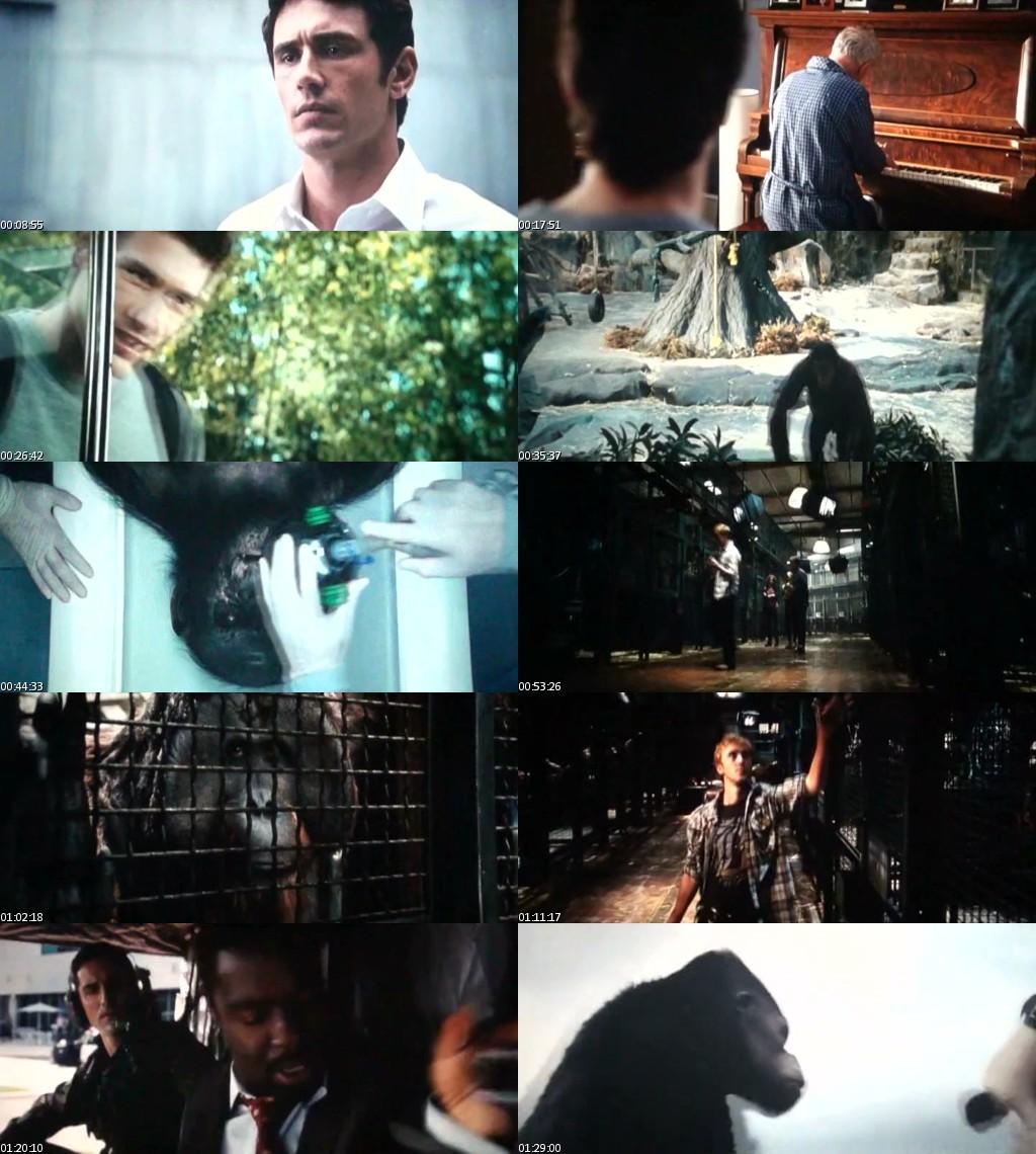 El origen del Planeta de los Simios (2011) [TScreener HQ] [Latino] [MKV]