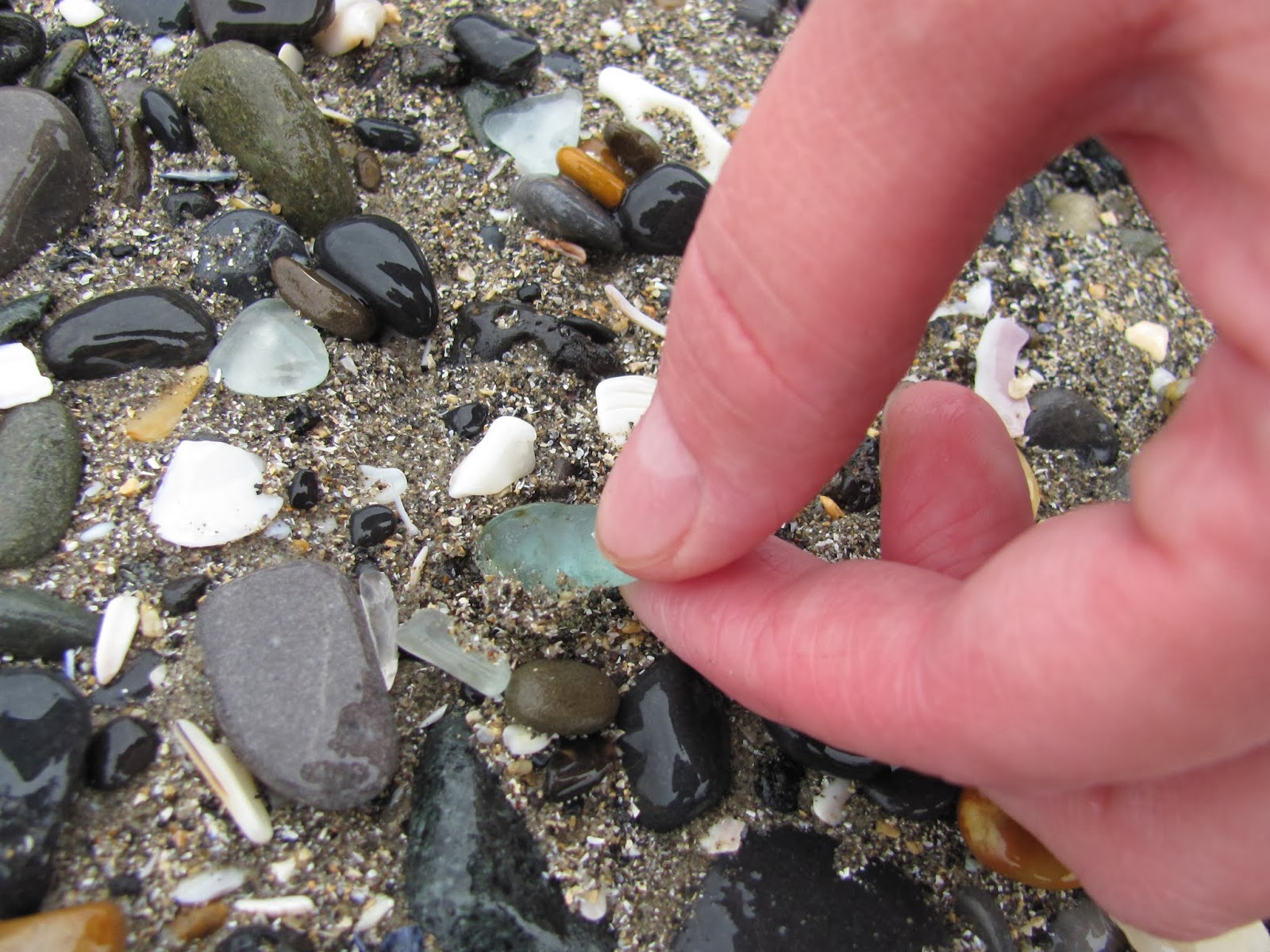 A hand collects a piece of sea glass from the rocks on the shore of Dublin Bay at Seapoint Beach, Dun Laoghaire, Co. Dublin, Ireland