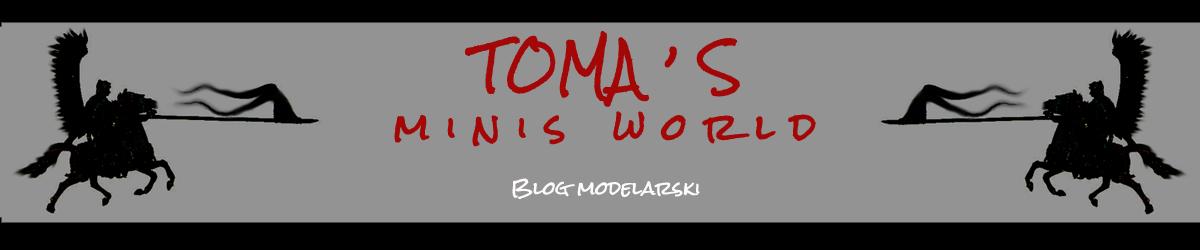 TOMA'S minis world