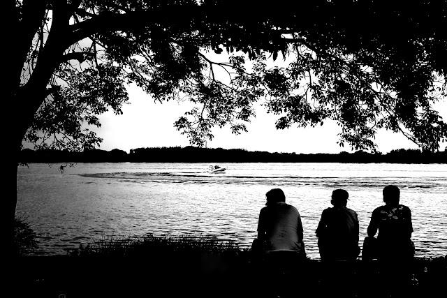 Três homens sentados embaixo de árvores observando a água