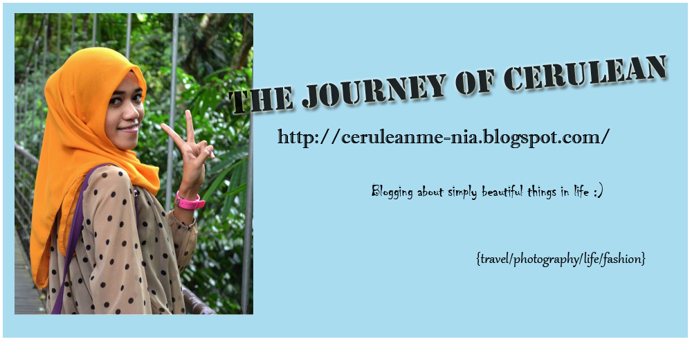 the journey of cerulean