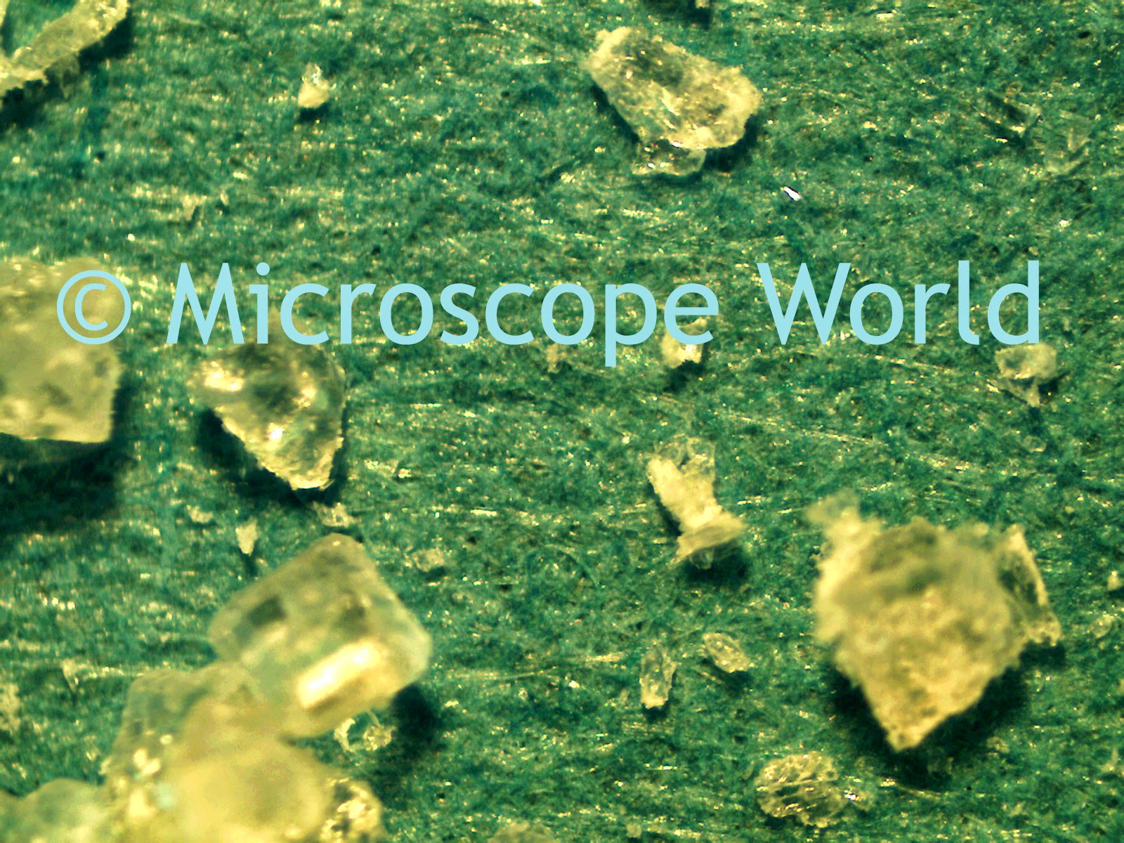 Sugar under a stereo microscope at 40x.