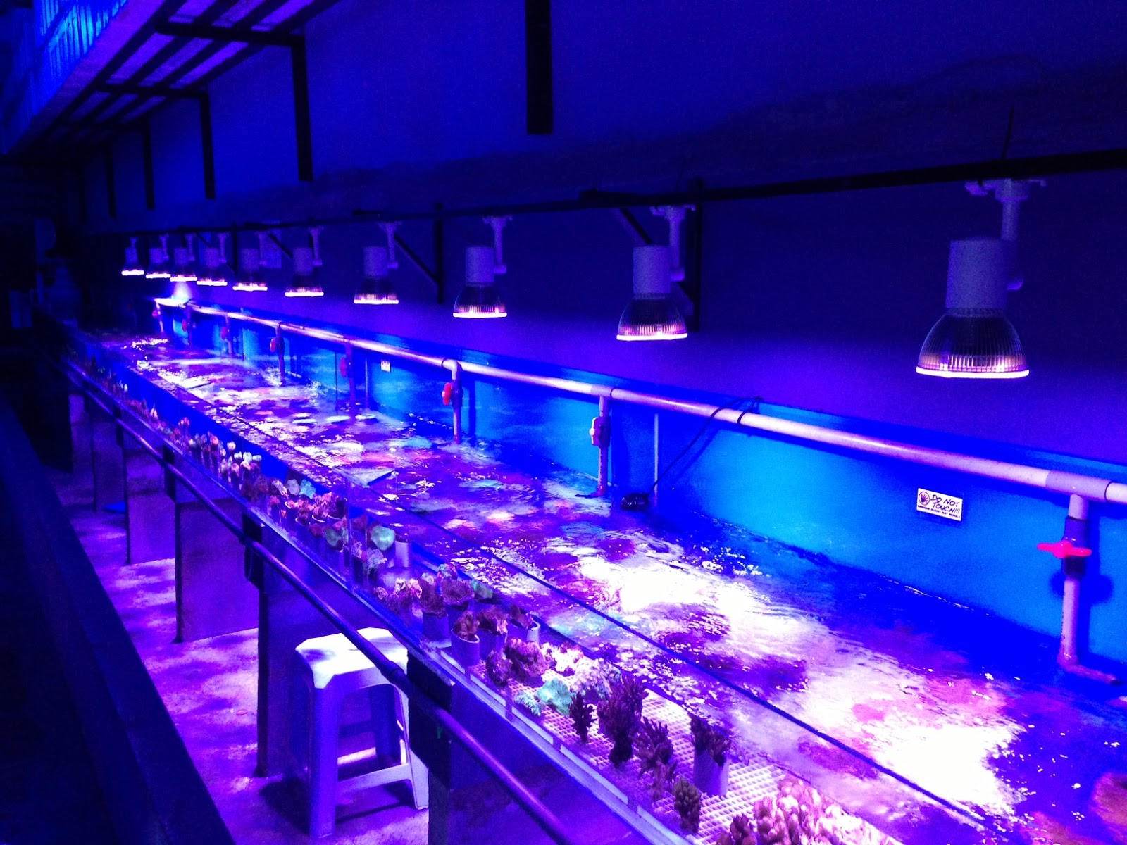led aquarium lighting blog orphek orphek nr 12 nano led. Black Bedroom Furniture Sets. Home Design Ideas