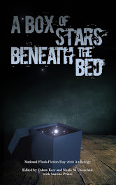 A Box of Stars Beneath the Bed