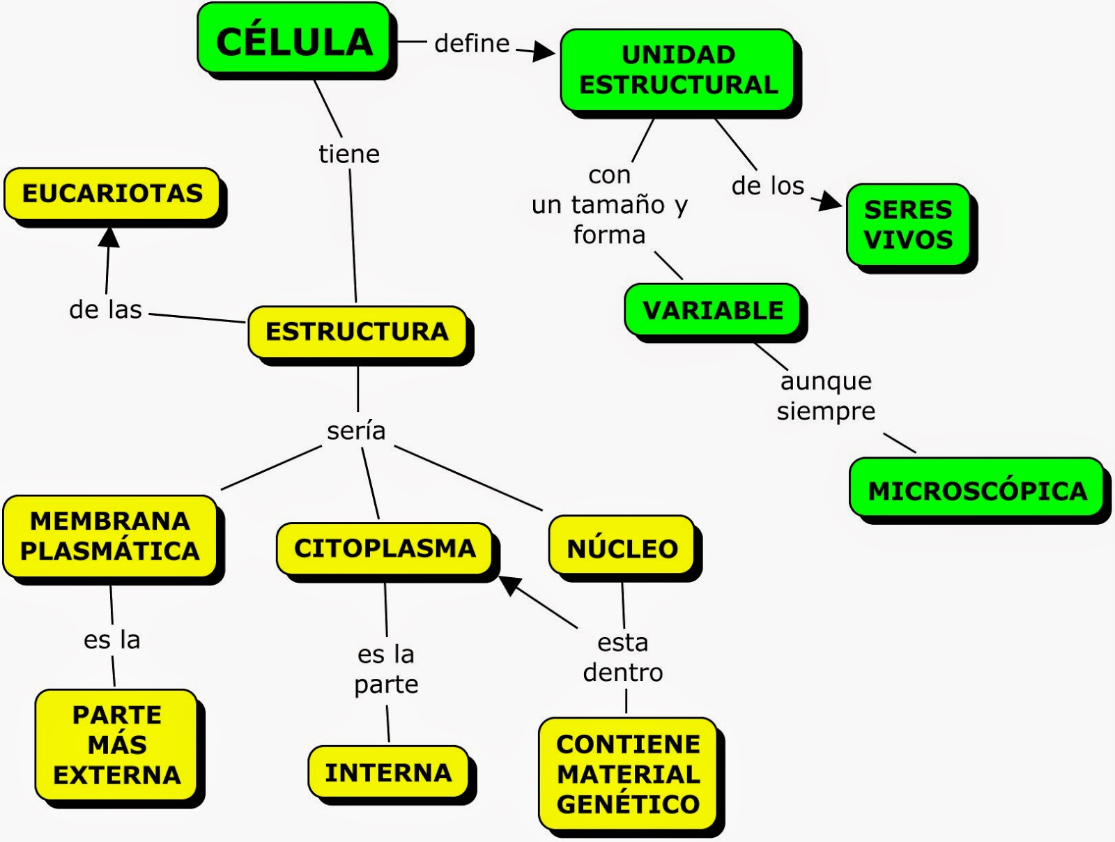 MAPA CONCEPTUAL SOBRE LA CÉLULA | MAPAS CONCEPTUALES (MIND MAPS) y ...