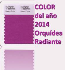 el Color del Año 2014