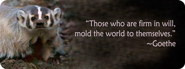 Badger Wisdom