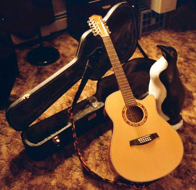 chitara acustica ibanez pinguin - Acel DEMON numit... FOLK
