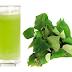 Mixture Heart Leaves with Mung Bean Drink (Nước Rau Diếp Cá và Đậu Xanh)