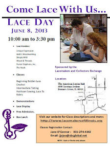 Jun 8, 2013: L.A.C.E. Day (Illinois)