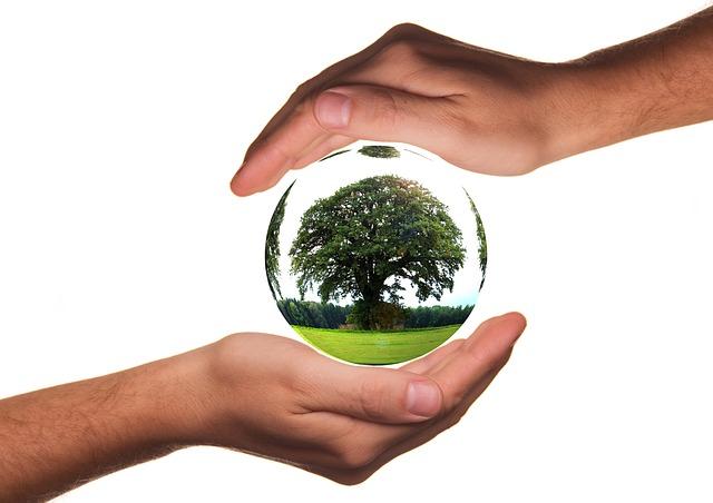 Arti Penting Lingkungan Hidup
