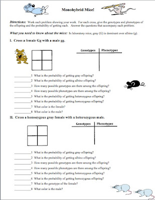 Printables Monohybrid Cross Worksheet classroom freebies genetics the monohybrid one factor cross related posts