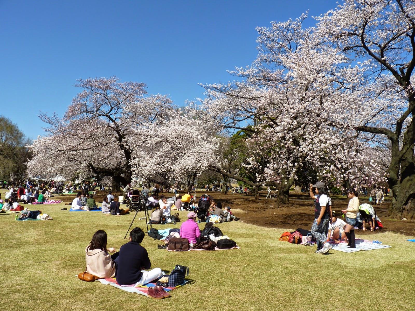 Japoneses num parque no Japão