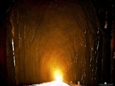 Tunnel Lars Van De Goor