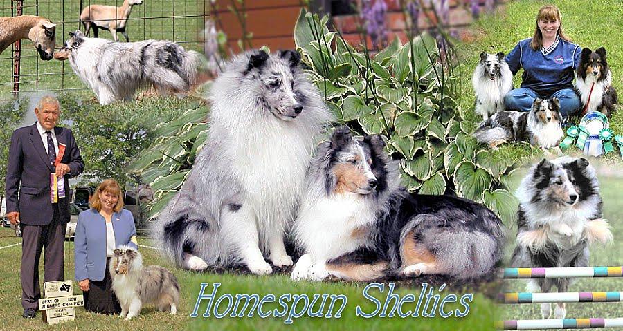 Homespun Shelties