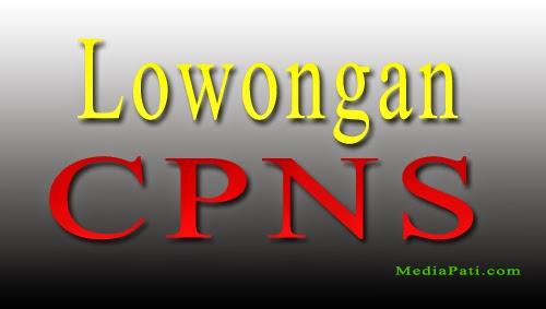 Lowongan CPNS  Untuk Guru 2015