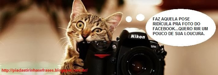Conhecido Frases Engraçadas e Animais engraçados: Facebook poses - Piadas  SH65