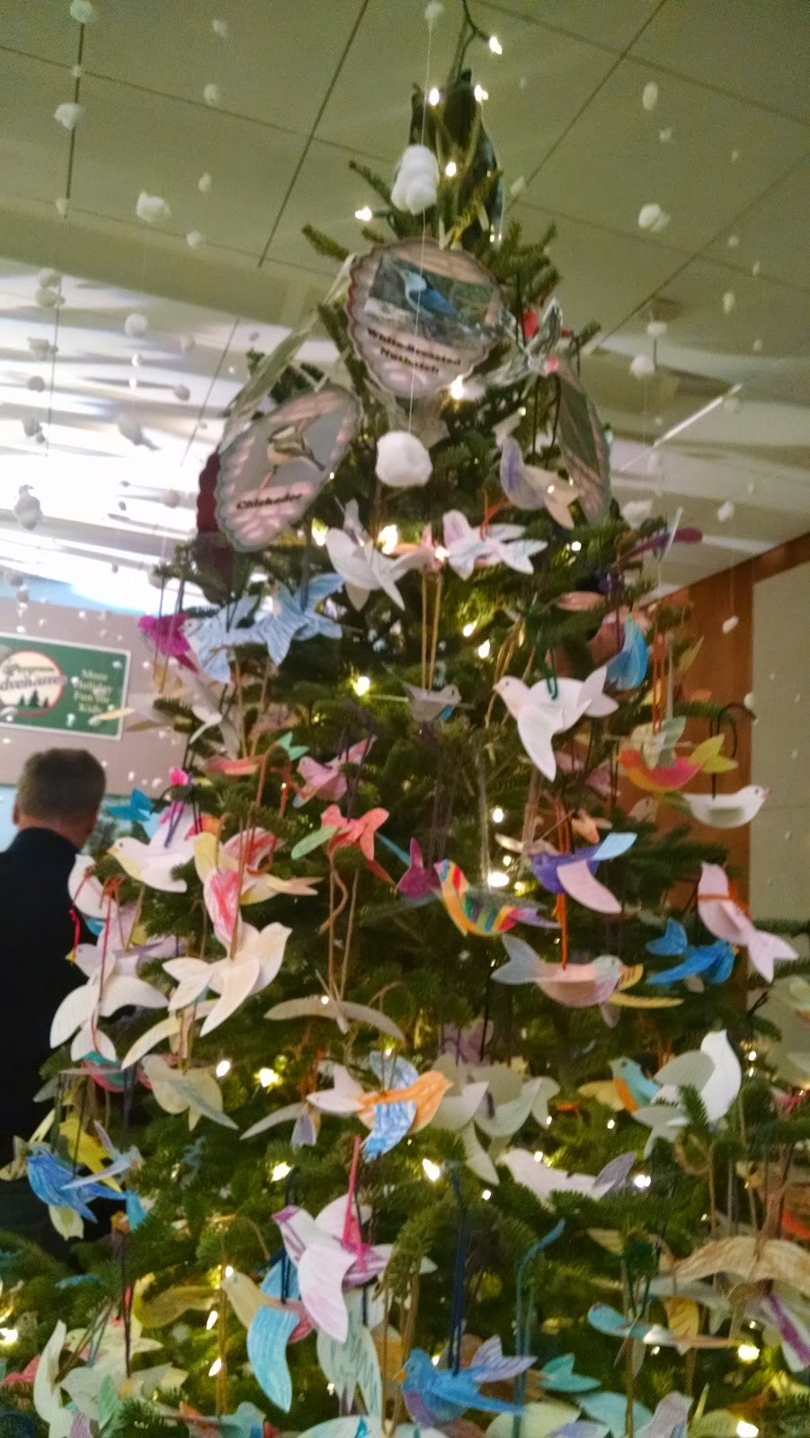 A View from the North Coast: Cleveland Botanical Garden: Christmas ...