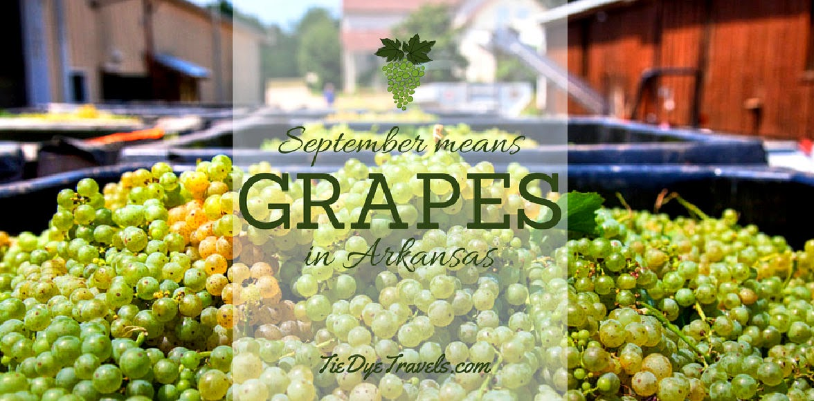 Aren't grapes groovy?