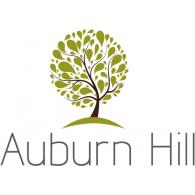 Auburn Hill