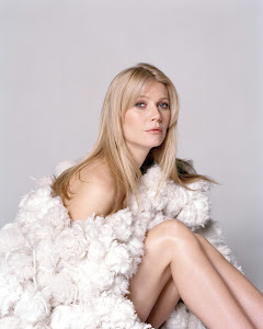 Gwyneth Paltrow Beautiful Hollywood Actress 2012 http://hollywoodactress2012.blogspot.com
